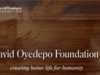 David Oyedepo Foundation Scholarships For Nigerians