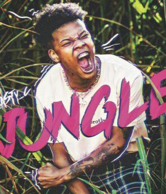 Nasty C – Jungle Lyrics