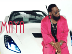 Video Timaya – To U