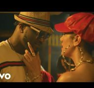 Mr. P ft. Nyanda – Wokie Wokie Mp4 Download