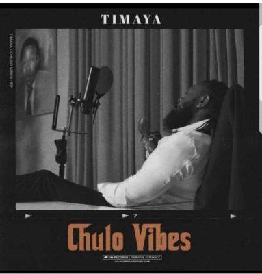 Timaya – Stoopid