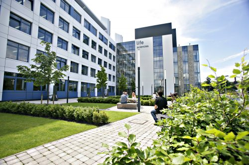 Global Excellence Scholarships For Undergraduates At University Of Dundee in UK 2019