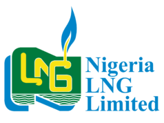 Up to N1 Million for Grab At NLNG Prize for Literary Criticism, 2019