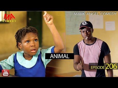 Animal Mark Angel Comedy Episode 206